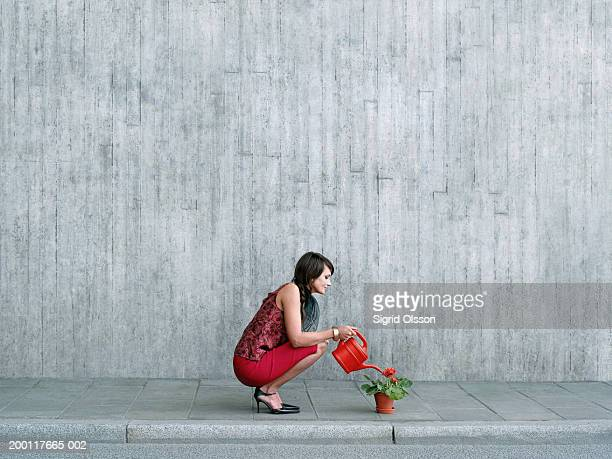 Woman crouching to water pot plant on pavement, side view