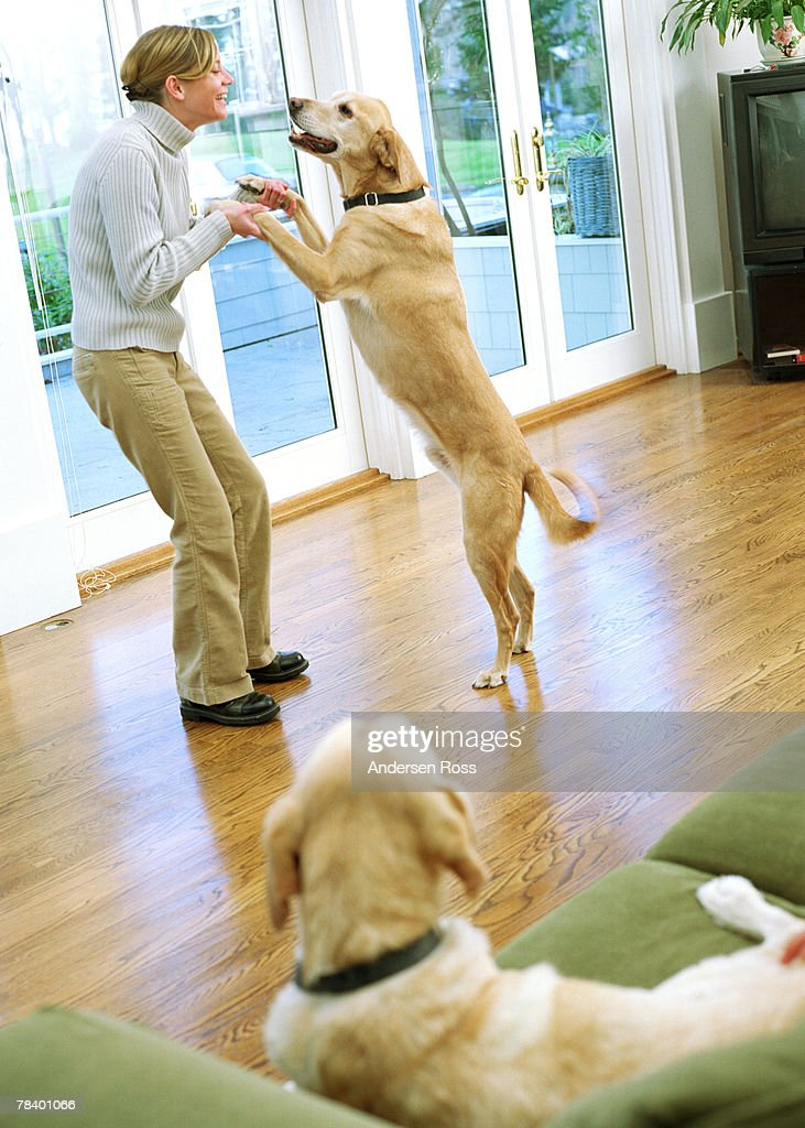 Woman dancing with her dog : Stock Photo
