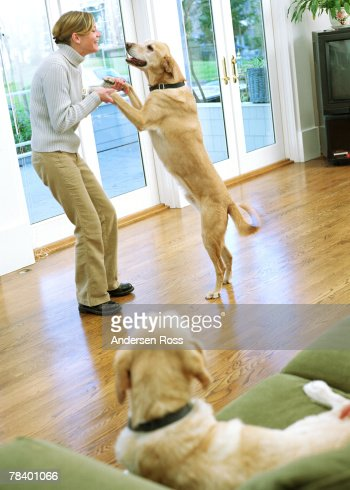 Woman dancing with her dog : Foto de stock