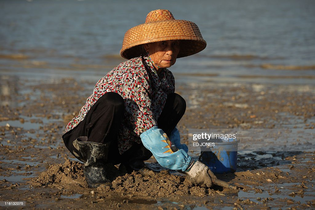 A woman digs for clams at low tide on Lantau island, Hong Kong on July 3, 2011. Whether for business or pleasure, the tradition of digging for clams is a regular draw for residents of Hong Kong's outlying islands. Bounty hunters prepared to spend hours hunched over barnacled rocks can expect a sure reward for their currency of clams from the ever-present nearby seafood establisments only too happy to serve up a hard-won catch. AFP PHOTO / ED JONES