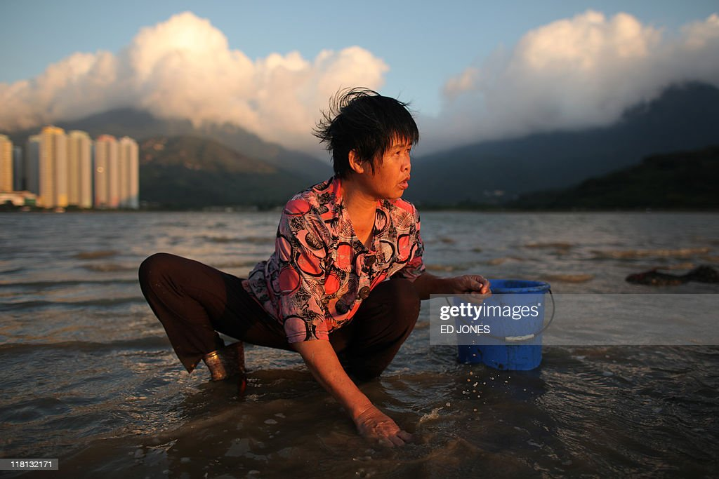 A woman digs for clams at low tide on Lantau island, Hong Kong on July 3, 2011. Whether for business or pleasure, the tradition of digging for clams is a regular draw for residents of Hong Kong's outlying islands. Bounty hunters prepared to spend hours hunched over barnacled rocks can expect a sure reward for their currency of clams from the ever-present nearby seafood establisments only too happy to serve up a hard-won catch.