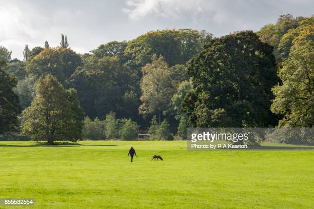 Woman dog walking in a park in early autumn