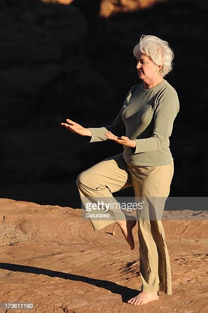 Woman Doing Tai Chi Near Desert Canyon