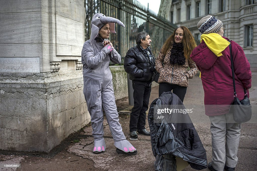 A woman dons an elephant suit to demonstrate against the planned euthanasia of Baby and Nepal, two elephants suffering from tuberculosis, on December 19, 2012 outside the Parc de la Tete d'Or Zoo in Lyon, central eastern France. The two ailing middle-aged elephants that French officials have wanted put down have been given a Christmas reprieve after an appeal to President Francois Hollande and an Internet campaign to save them.