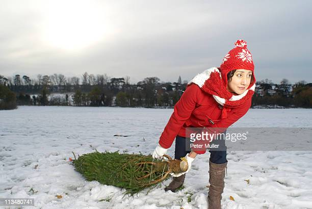Woman dragging christmas tree in snow
