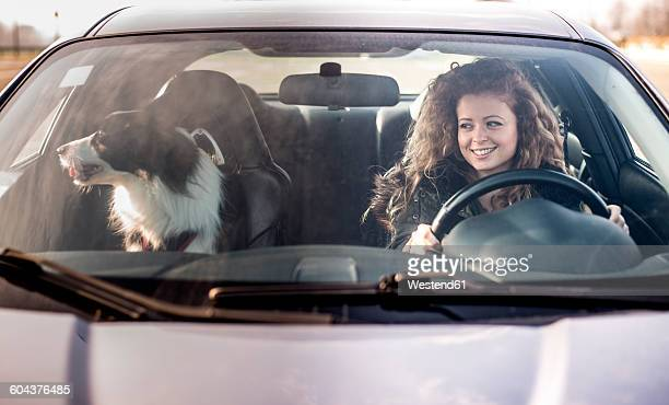 Woman driving car, dog sitting on passenger seat