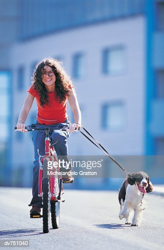 Woman Driving Her Moped With Her Cocker Spaniel : Stock Photo