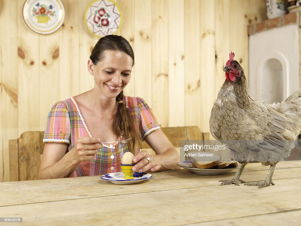 Woman eating boiled egg with chicken on table : Stock Photo
