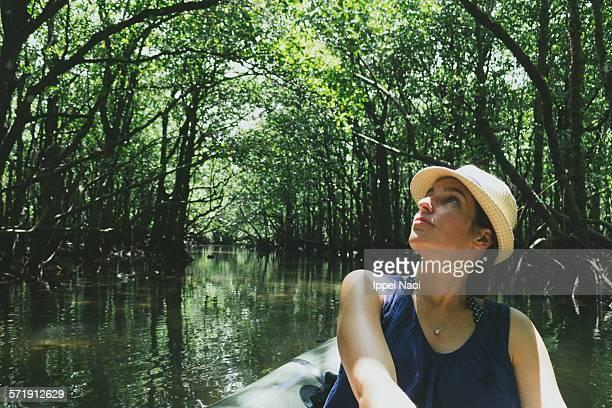 Woman enjoying mangrove canopy from kayak, Japan