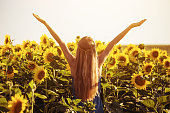 Happy woman enjoys spending time in sunflower field.Image is intentionally toned.