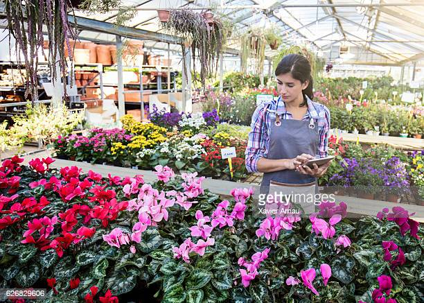 Woman examining flowering plants at garden center