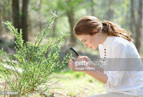 Woman examining plant with magnifying glass. : Stock Photo