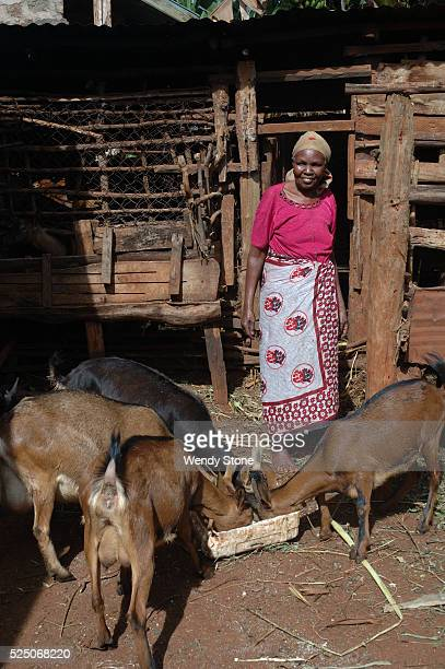 Woman farmer who practices agroforestry methods feeds her goats fodder from her farm