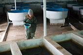 Young woman working on sturgeon farm, feeding fish in tanks