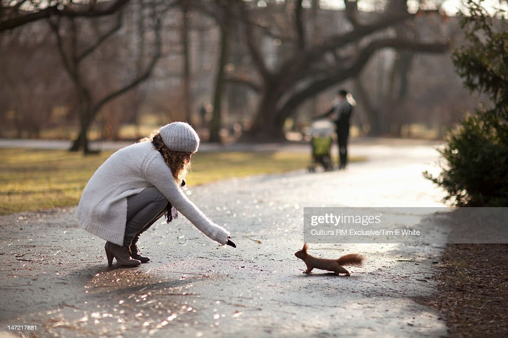 Woman feeding squirrel in park : Stock Photo