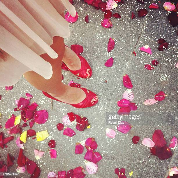 Woman feet and rose petals on ground