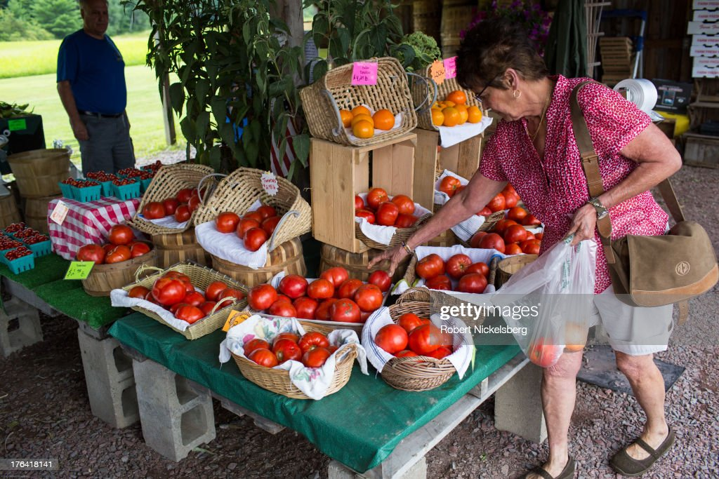 A woman fills a bag with fresh local tomatoes at Pattie's Patch fruit and vegetable stand August 4, 2013 in Whitehall, New York.
