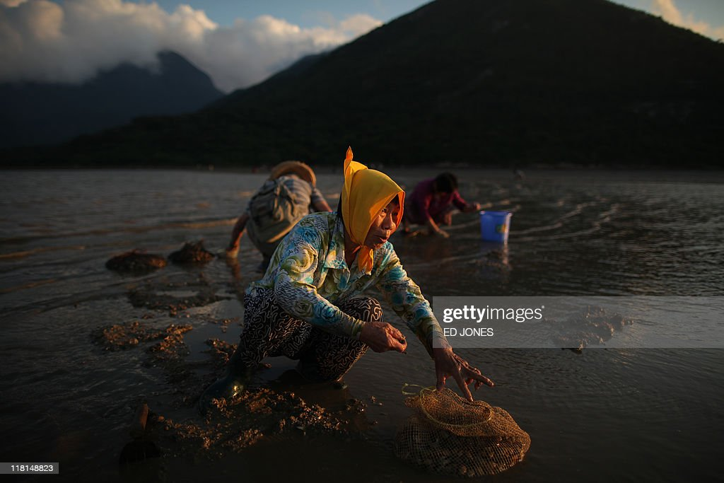 A woman fills a net with clams during low tide on Lantau island, Hong Kong on July 3, 2011. Whether for business or pleasure, the tradition of digging for clams is a regular draw for residents of Hong Kong's outlying islands. Bounty hunters prepared to spend hours hunched over barnacled rocks can expect a sure reward for their currency of clams from the ever-present nearby seafood establisments only too happy to serve up a hard-won catch.