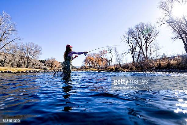 Woman Fly Fisher Casting and Catching Fish