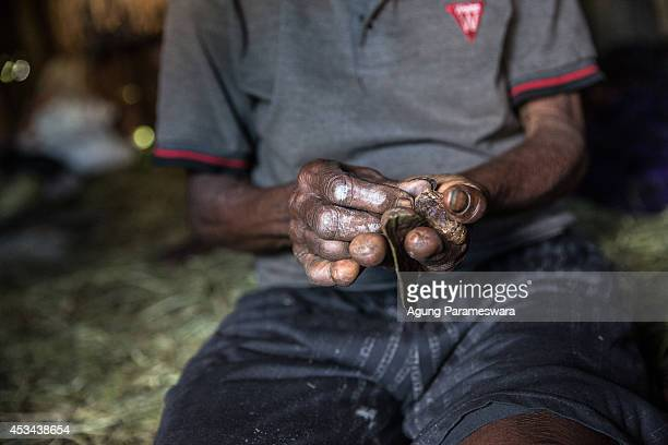 A woman from the Dani tribe with amputated fingers makes a traditional cigarette at Obia Village on August 9 2014 in Wamena Papua Indonesia The Dani...