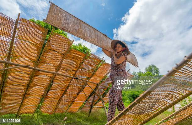 Woman going to to dry in the sun girdle cake (banh trang)