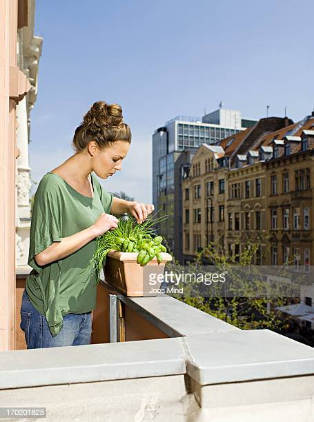 woman growing herbs on city balcony