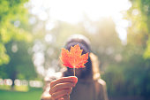 Woman Hand Holding Red Maple Leaf in a canadian park