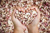 Woman hand make heart shape holding fresh garlic as love vegetable and love cook concept