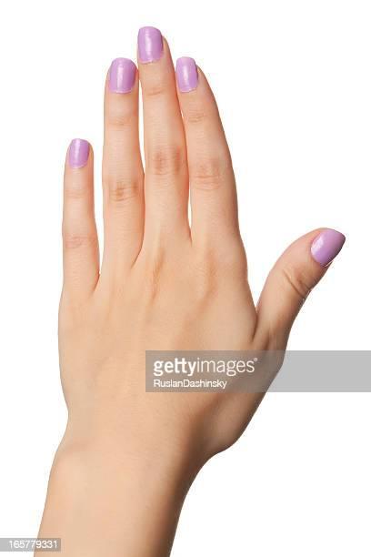 Frau hand mit violet painted Nägel