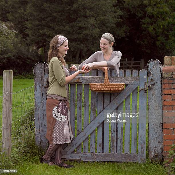 Woman handing other woman tomato over fence in countryside