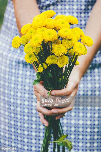 Woman hands holding yellow flowers.