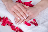 Girl hands with french manicure on white towel and red rose petals in salon. Manicure and nails polish concept. Close up, selective focus