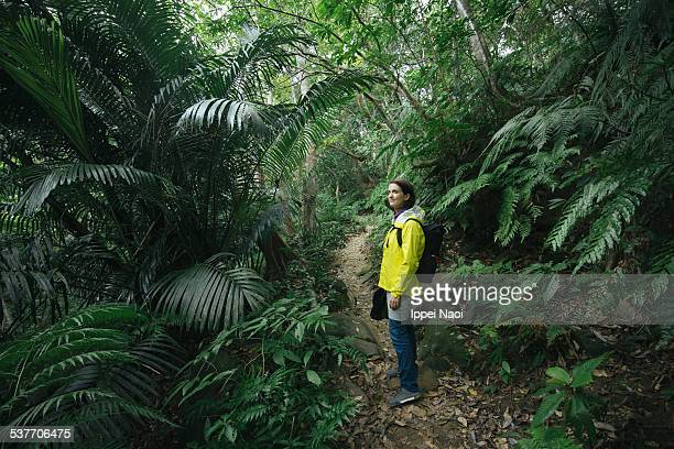 Woman hiking in lush rainforest