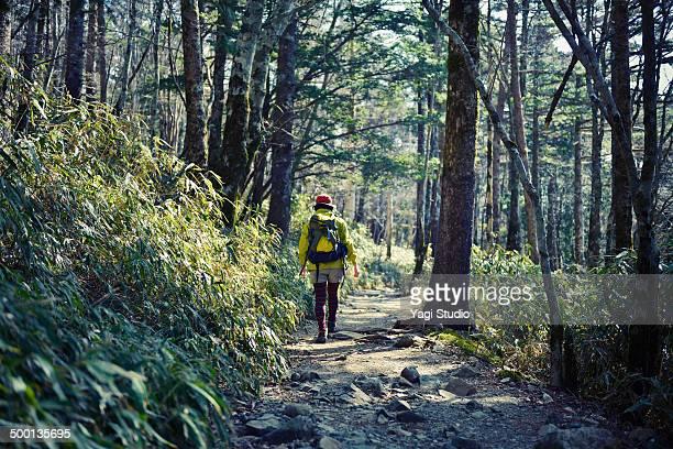 Woman hiking in Mt. Odaigahara