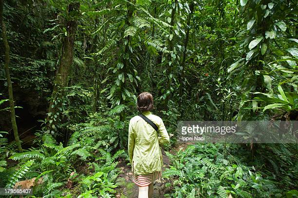 Woman hiking in tropical jungle, Palau
