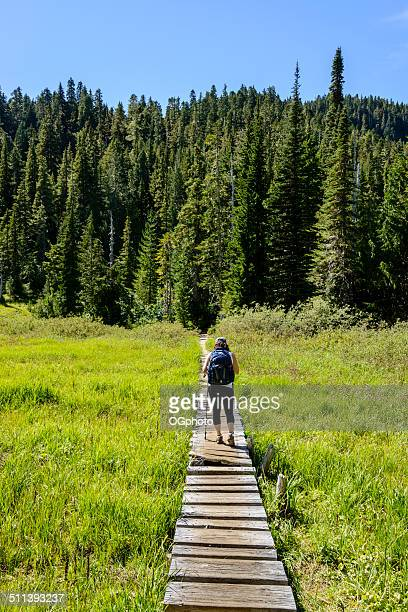Woman hiking on a board walk trail towards woods -XXXL