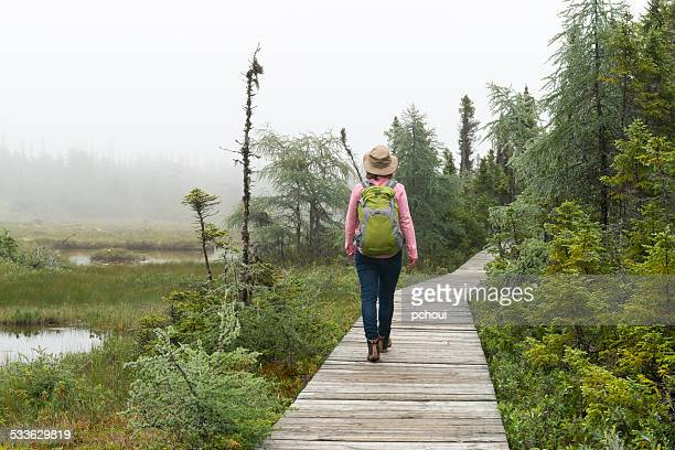 Woman hiking on footpath trough boreal forest