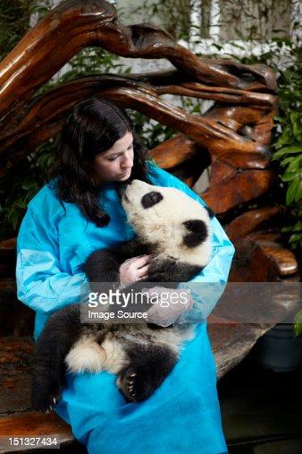 Woman holding 6 month old Giant Panda at Chengdu Panda Breeding Research Center