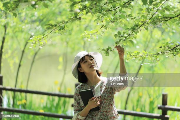 woman holding a book at a park and touching a leaf of a tree