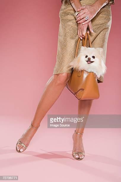 犬を抱く女性のバッグ