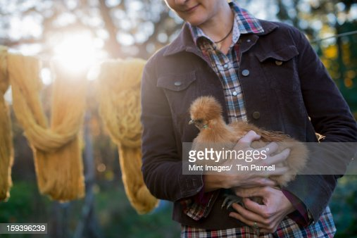 A woman holding a small brown fluffy chicken. A long brown knitted scarf on a washing line. Autumn sunshine filtering through trees. : Stock Photo