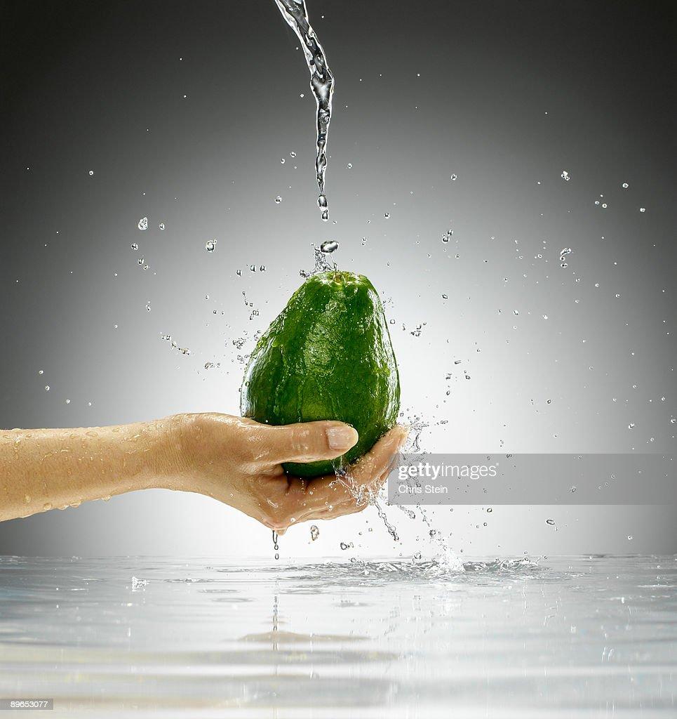 Woman holding an Avocado : Stock Photo