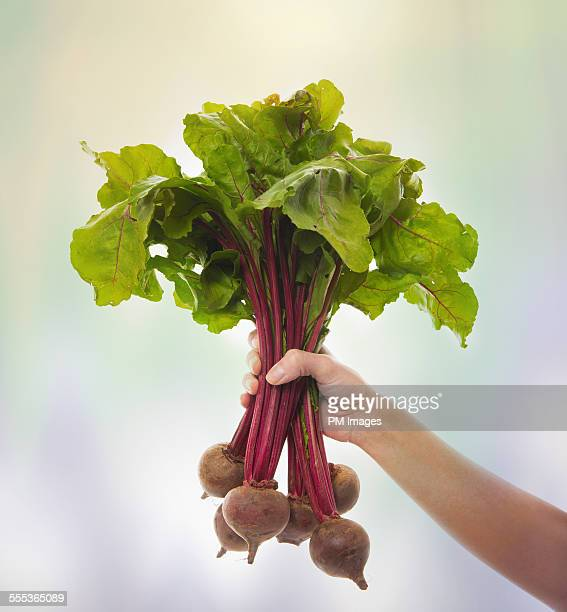 Woman Holding Beets