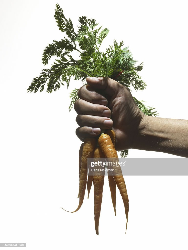 Woman holding bunch of carrots by leaves, close-up, side view : Stock Photo