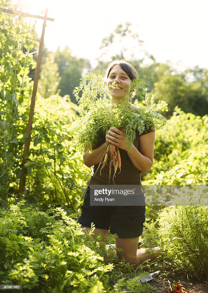 Woman Holding Carrots in Garden : Stock Photo