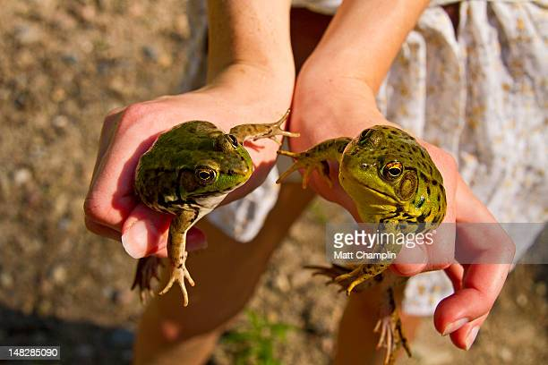 Woman holding  green Frogs