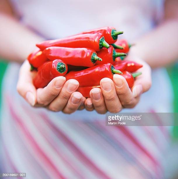 Woman holding handful of red chillies, mid section, close-up