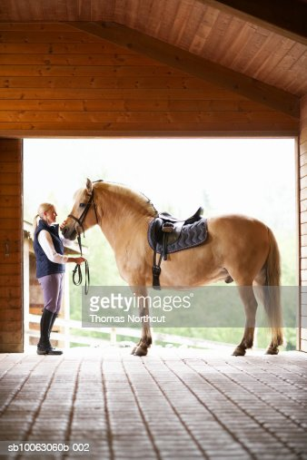 Woman holding horse steady in stable doorway : Stock Photo