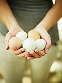 Woman holding organic farm fresh eggs