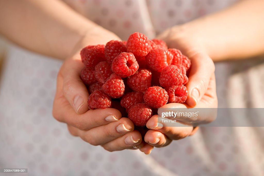 Woman holding raspberries, mid section, close-up : Stock Photo